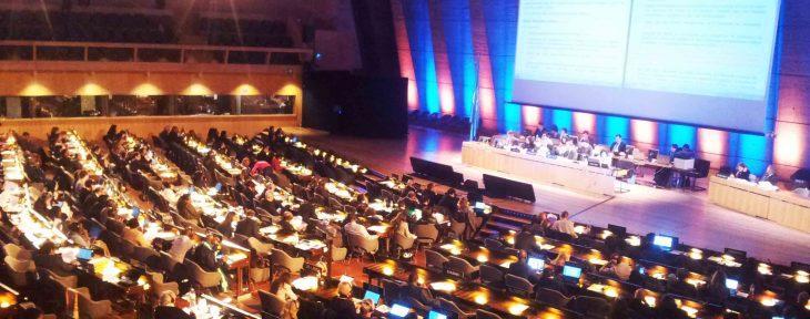 Ich Ngo Forum: schedule activities of the ngos at 7.GA