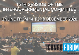 Intergovernmental Committee: online from 14 to 19 december 2020