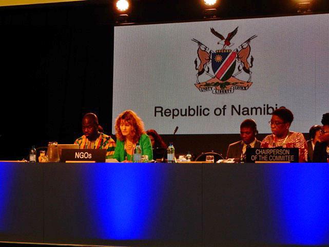 ICH NGO Forum Speech for the 10.COM IGC